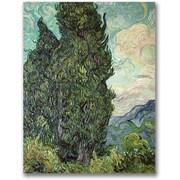 """Trademark Global Vincent Van Gogh """"Cypresses, 1889"""" Canvas Arts"""