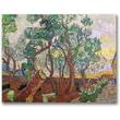 "Trademark Global Vincent Van Gogh ""The Garden of St. Paul"" Canvas Arts"