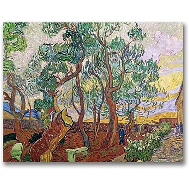 Trademark Global Vincent Van Gogh in.The Garden of St. Paulin. Canvas Arts