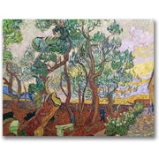 "Trademark Global Vincent Van Gogh ""The Garden of St. Paul"" Canvas Art, 35"" x 47"""