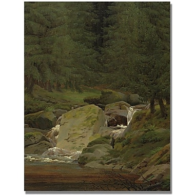 Trademark Global Caspar David Friedrich in.Evergreens by the Waterfallin. Canvas Arts