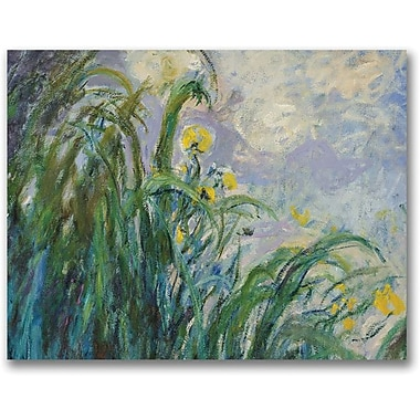 Trademark Global Claude Monet in.The Yellow Irisin. Canvas Art, 35in. x 47in.
