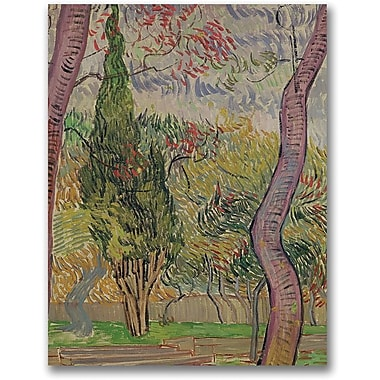 Trademark Global Vincent Van Gogh in.The Park at Saint-Paulin. Canvas Art, 47in. x 35in.
