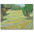 Trademark Global Vincent Van Gogh in.Field in Sunlightin. Canvas Art, 35in. x 47in.