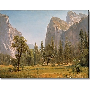Trademark Global Albert Bierstandt in.Bridal Veil Falls, Yosemitein. Canvas Arts