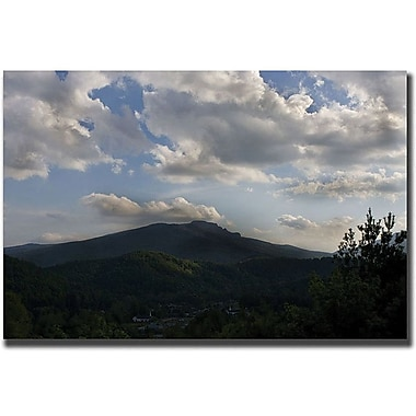 Trademark Global Cary Hahn in.Landscapein. Canvas Art, 24in. x 32in.