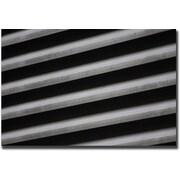 "Trademark Global Cary Hahn ""Black & White"" Canvas Art, 24"" x 32"""
