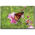 Trademark Global Cary Hahn in.Spring Iin. Canvas Arts