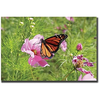 Trademark Global Cary Hahn in.Spring Iin. Canvas Art, 18in. x 24in.