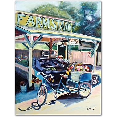 Trademark Global Colleen Proppe in.Framstand Bikein. Canvas Art, 24in. x 18in.