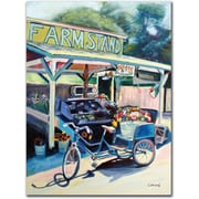 "Trademark Global Colleen Proppe ""Framstand Bike"" Canvas Arts"