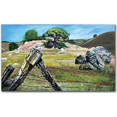 Trademark Global Colleen Proppe in.Nicasio Fense Postin. Canvas Art, 30in. x 47in.