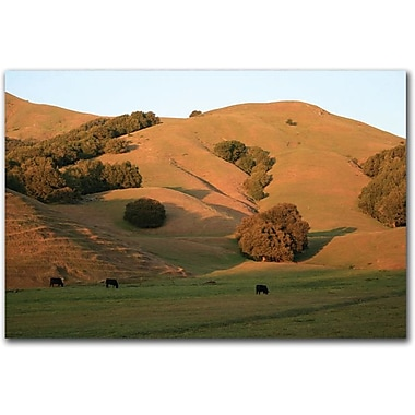 Trademark Global Colleen Proppe in.Red Hills Flandersin. Canvas Art, 30in. x 47in.