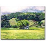 "Trademark Global Colleen Proppe ""Spirit Rock"" Canvas Art, 14"" x 19"""