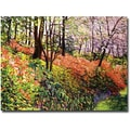 Trademark Global David Glover in.Magic Flower Forestin. Canvas Art, 24in. x 32in.