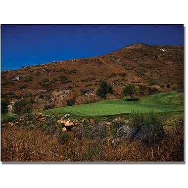 Trademark Global in.A Swing from the Rough Golfin. Canvas Arts