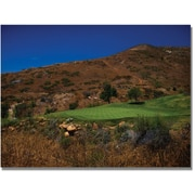 "Trademark Global ""A Swing from the Rough Golf"" Canvas Arts"