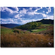 "Trademark Global Colleen Proppe ""Golfer's Paradise"" Canvas Arts"