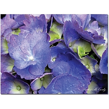 Trademark Global Kathie McCurdy in.Hydrangeain. Canvas Art, 35in. x 47in.