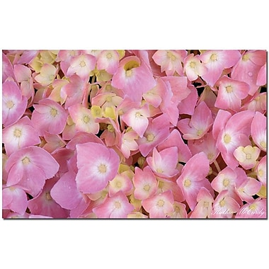 Trademark Global Kathie McCurdy in.Pink Hydrangeain. Canvas Arts