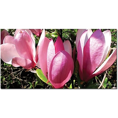 Trademark Global Kathie McCurdy in.Magnoliain. Canvas Art, 24in. x 47in.