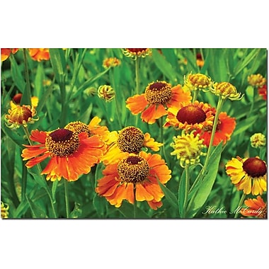 Trademark Global Kathie McCurdy in.Orange Daisiesin. Canvas Art, 30in. x 47in.