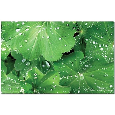 Trademark Global Kathie McCurdy in.Water Dropletsin. Canvas Art, 30in. x 47in.
