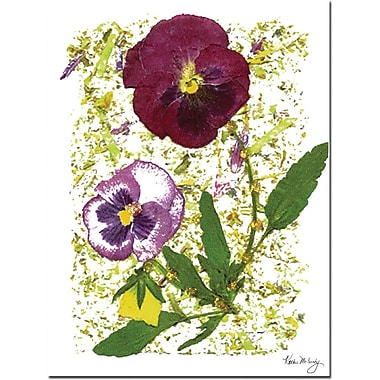 Trademark Global Kathie McCurdy in.Plum Pansyin. Canvas Art, 24in. x 18in.