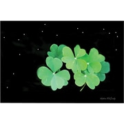 "Trademark Global Kathie McCurdy ""Starry Night Clover"" Canvas Art, 30"" x 47"""