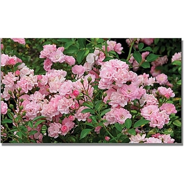 Trademark Global Kathie McCurdy in.Pink Rosesin. Canvas Art, 30in. x 47in.