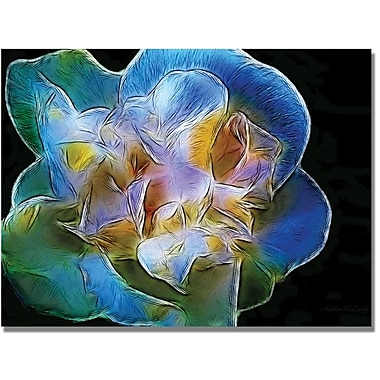 Trademark Global Kathie McCurdy in.Big Blue Flowerin. Canvas Arts