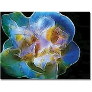 "Trademark Global Kathie McCurdy ""Big Blue Flower"" Canvas Art, 35"" x 47"""