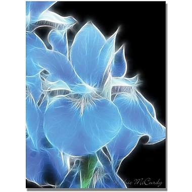 Trademark Global Kathie McCurdy in.Big Blue Irisin. Canvas Art, 24in. x 18in.