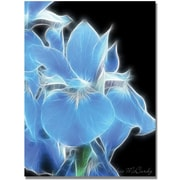 "Trademark Global Kathie McCurdy ""Big Blue Iris"" Canvas Art, 24"" x 18"""