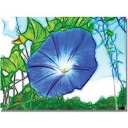 "Trademark Global Kathie McCurdy ""Heavenly Blue Morning Glory"" Canvas Art, 18"" x 24"""