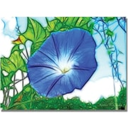 Trademark Global Kathie McCurdy Heavenly Blue Morning Glory Canvas Art, 30 x 47