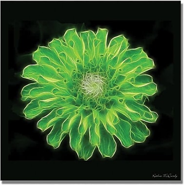 Trademark Global Kathie McCurdy in.Green Zinniain. Canvas Arts