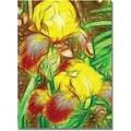 Trademark Global Kathie McCurdy in.Iris Yellow Batikin. Canvas Art, 24in. x 18in.