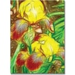 Trademark Global Kathie McCurdy in.Iris Yellow Batikin. Canvas Art, 24in. x 18in.