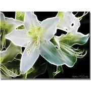 Trademark Global Kathie McCurdy White Azalea Canvas Art, 18 x 24