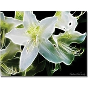 "Trademark Global Kathie McCurdy ""White Azalea"" Canvas Art, 30"" x 47"""
