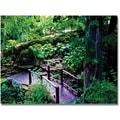 Trademark Global Kathie McCurdy in.Bridge in the Garden of Lightin. Canvas Art, 30in. x 47in.