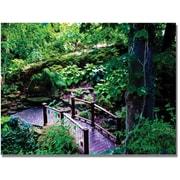 Trademark Global Kathie McCurdy Bridge in the Garden of Light Canvas Art, 30 x 47