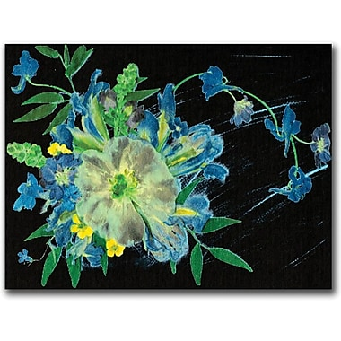 Trademark Global Kathie McCurdy in.Meteor Showerin. Canvas Art, 18in. x 24in.