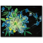 "Trademark Global Kathie McCurdy ""Meteor Shower"" Canvas Art, 18"" x 24"""