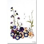 "Trademark Global Kathie McCurdy ""Into a Dream"" Canvas Art, 24"" x 16"""