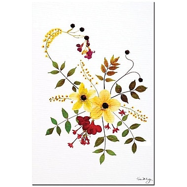 Trademark Global Kathie McCurdy in.Enchanted Garden Splashin. Canvas Art, 24in. x 16in.