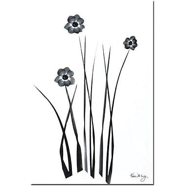 Trademark Global Kathie McCurdy in.Black and White Bunchin. Canvas Art, 24in. x 16in.
