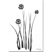 "Trademark Global Kathie McCurdy ""Black and White Bunch"" Canvas Art, 24"" x 16"""