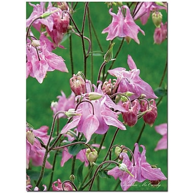 Trademark Global Kathie McCurdy in.Pink Columbinein. Canvas Art, 47in. x 35in.